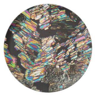 Alanine Amino Acid under the Microscope Plate