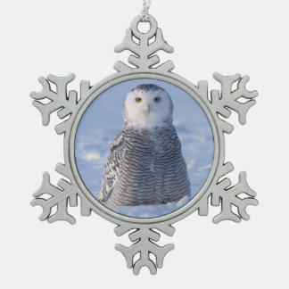 Alaska Arctic Snowy Owl Winter Scene Photo Design Pewter Snowflake Decoration