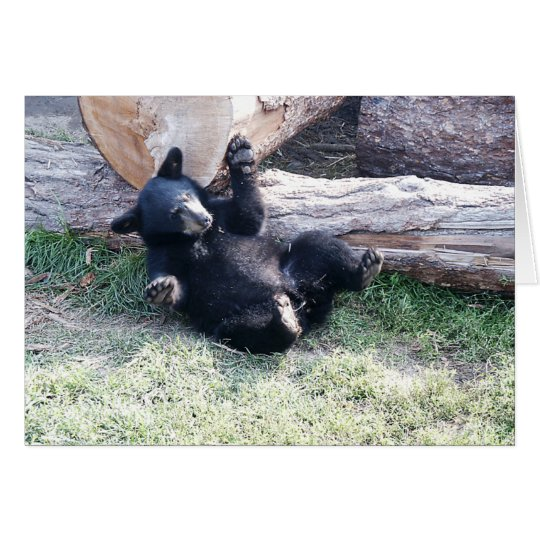 Alaska Black Bear Cub Greeting Card