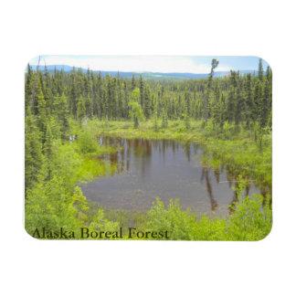 Alaska Boreal Forest Magnet