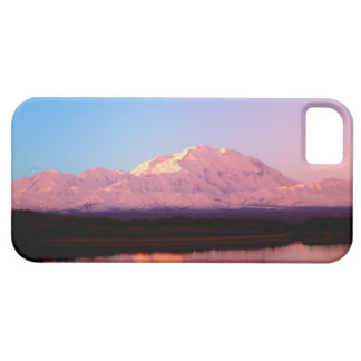 Alaska, Denali National Park, Mt. McKinley at Case For The iPhone 5
