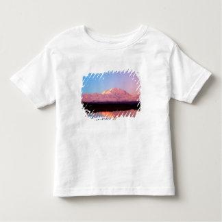 Alaska, Denali National Park, Mt. McKinley at Toddler T-Shirt