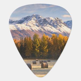Alaska Farming Guitar Pick