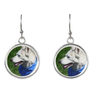 Alaska Husky Earrings