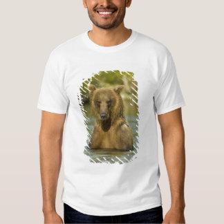 Alaska. Katmai NP. Coastal Brown Bear fishing Shirts