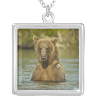 Alaska. Katmai NP. Coastal Brown Bear fishing Silver Plated Necklace