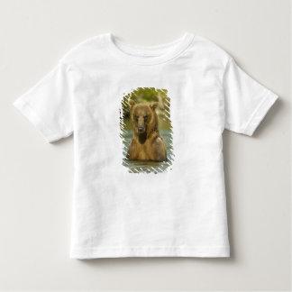 Alaska. Katmai NP. Coastal Brown Bear fishing T-shirt