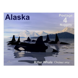 Alaska Killer Whales Stamp Poster