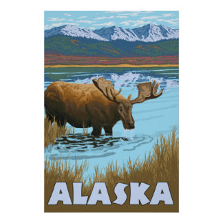 Alaska - Moose Drinking Water Poster