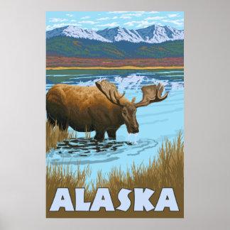 Alaska - Moose Drinking Water Print