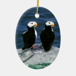 Alaska Puffins Feathered Colorful Birds Ceramic Oval Decoration