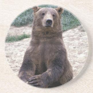 Alaska, southeast region Brown bear Ursus Beverage Coaster