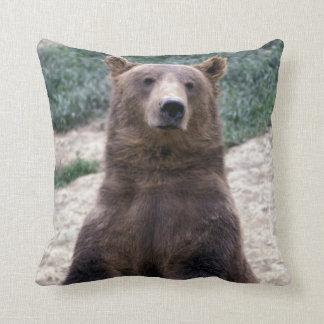 Alaska, southeast region Brown bear Ursus Cushion
