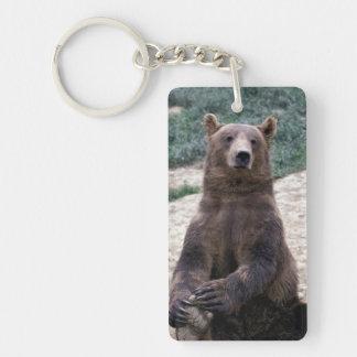 Alaska, southeast region Brown bear Ursus Key Ring
