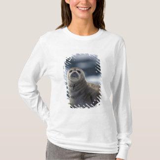 Alaska, southeast region Harbor seal on ice T-Shirt