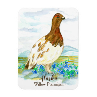 Alaska Tundra Willow Ptarmigan Watercolor Bird Magnet