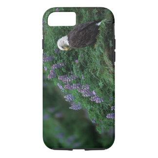 Alaska, Unalaska Island Bald Eagle among Nootka iPhone 8/7 Case