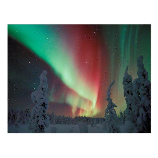 Alaskan Aurora Borealis Postcard