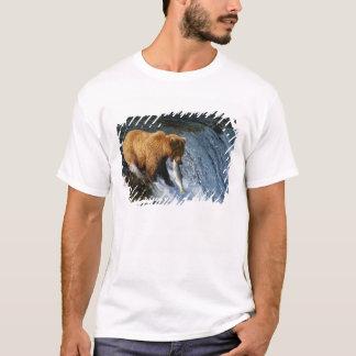 Alaskan Brown Bear Catching Salmon at Brooks T-Shirt