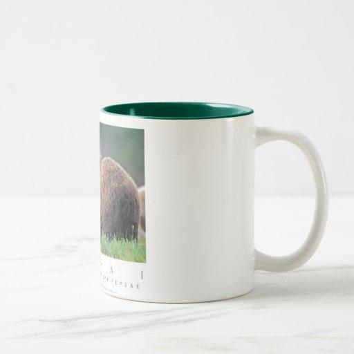 Alaskan Brown Bear Mugs