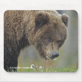 Alaskan Brown Bear Snacking on a Dandelion Mouse Pad