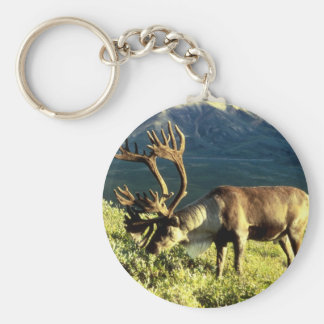 Alaskan Caribou Basic Round Button Key Ring