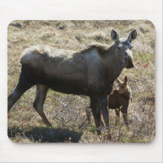 Alaskan Cow Moose with Calf Mouse Mat