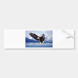 Alaskan Eagle In Flight Bumper Sticker
