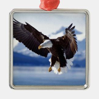 Alaskan Eagle In Flight Silver-Colored Square Decoration