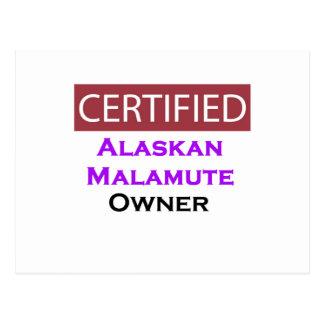 Alaskan Malamute Certified Owner Postcard