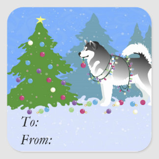 Alaskan Malamute Decorating Christmas Tree Square Sticker