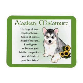 Alaskan Malamute Dog Art Vinyl Magnets