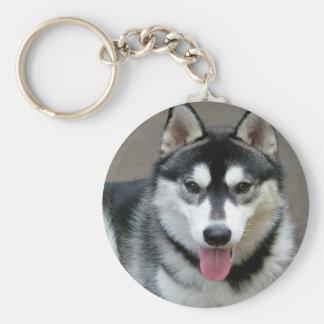 Alaskan Malamute Dog Photograph Basic Round Button Key Ring