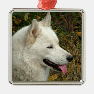 Alaskan Malamute Dog Photograph Silver-Colored Square Decoration