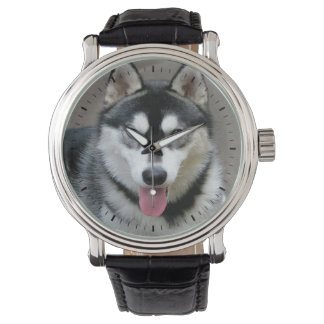 Alaskan Malamute Dog Photograph Wristwatch