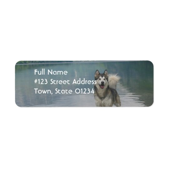 Alaskan Malamute Dog Return Address Label