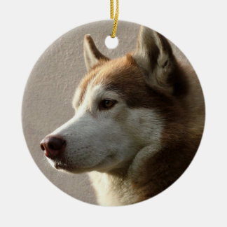 Alaskan Malamute Dog Round Ceramic Decoration