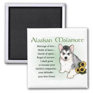 Alaskan Malamute Gifts Square Magnet