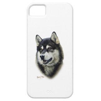 Alaskan Malamute iPhone 5 Case