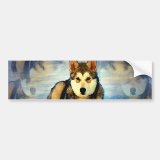 Alaskan Malamute Puppies Bumper Sticker