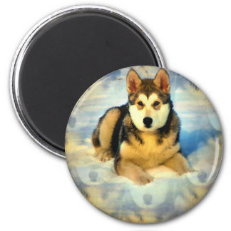 Alaskan Malamute Puppies Round Magnet Refrigerator Magnets