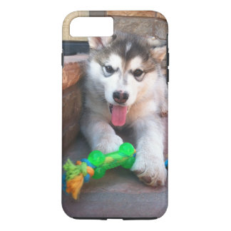 Alaskan Malamute Puppy With Rope Toy Photograph iPhone 7 Plus Case