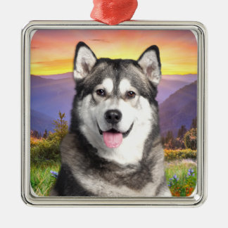 Alaskan Malamute Silver-Colored Square Decoration