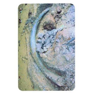 alaskan mammoth rectangular photo magnet