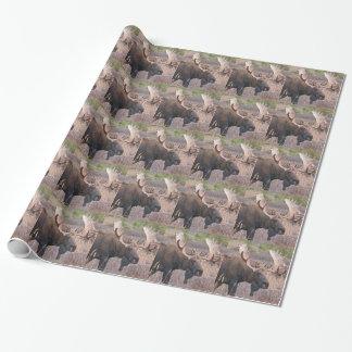 Alaskan Moose Wrapping Paper
