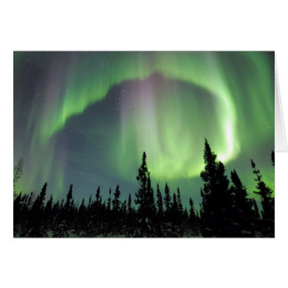 Alaskan Nights Card