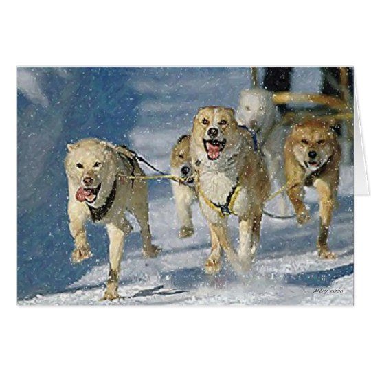 Alaskan Sled Dog Blank Greeting Card