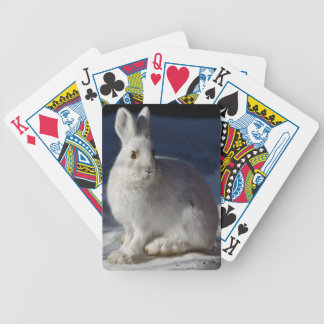 Alaskan Snowshoe Hare Bicycle Playing Cards
