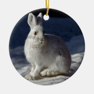 Alaskan Snowshoe Hare Christmas Ornament