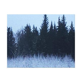 Alaskan winter canvas print
